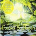 DREAM OF FAIRIES AND ANGELS - M. ROWLAND
